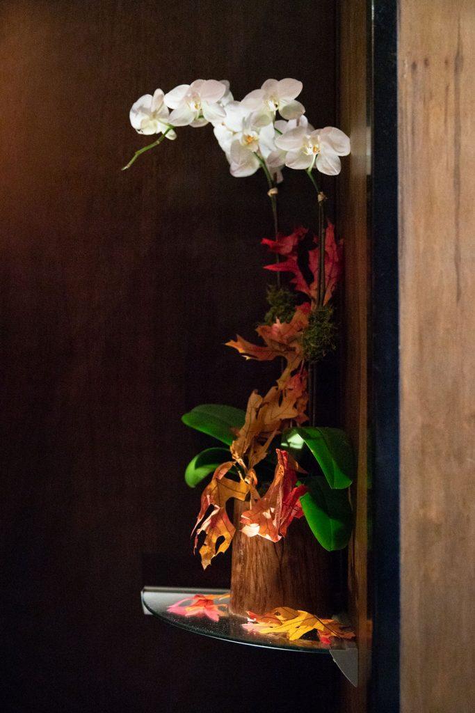Decor Orchids